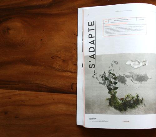 magazine flora article